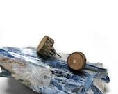 Rustic Magnolia Twig Wooden Stud Earrings by Tanja Sova