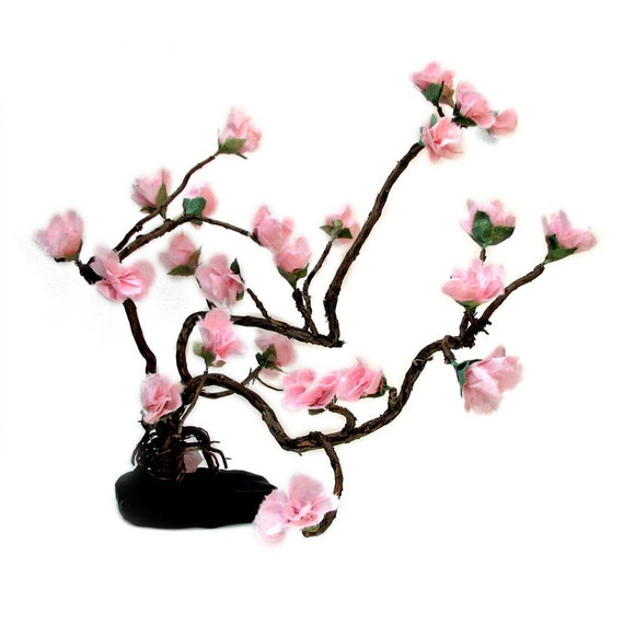 Love Enchanted Sakura Gnarl Bonsai - Prunus serrulata - by Tanja Sova