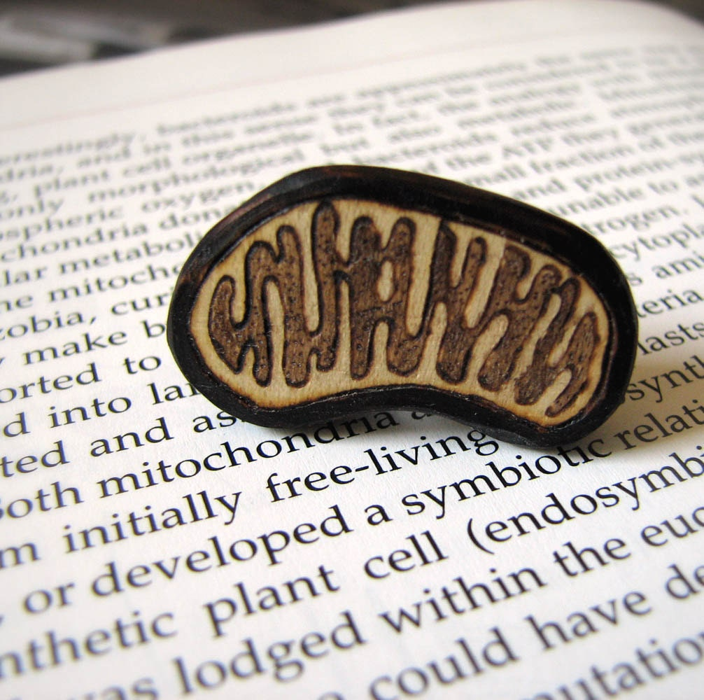 Fine Art Mitochondion Brooch Pin Pyrography Wood Carving by