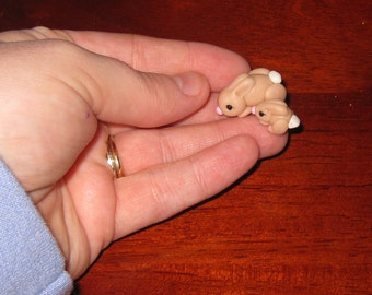 Teeny Tiny Mommy Bunny and Baby Bunny