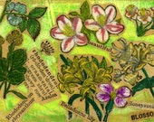 Reserved for MagMoment, Blossom, Original ACEO Collage, 7 Card Draw
