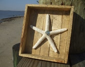 Finger Starfish Shadowbox Recycled Wood Howlite Mother of Pearl Pewter Starfish Charm