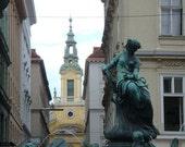 Vienna Fountain - 8x10 photograph
