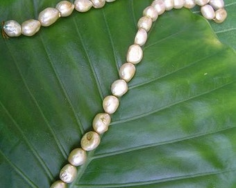 Freshwater Pearl Strand - Champagne, flat, puffy, nuggets