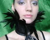 Black Coque Feather Collar/Choker Burlesque Fetish BellyDance Victorian Gothic Steampunk