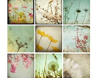 Nature Photo Set, 8x8's, flowers & dandelions, pastel, girl baby nursery prints