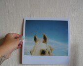 RESERVED FOR DAVESPARKS Could be a Unicorn - 8x8 Fine Art Polaroid Print