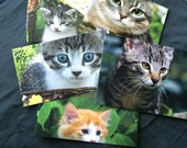 Go Green ... Set of 9 Envelopes ... Cats and Kittens