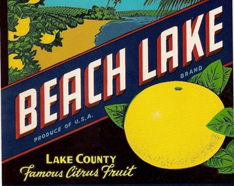 6 Different Old FLORIDA CITRUS CRATE Labels Beach Lake,Ruby,Triangle