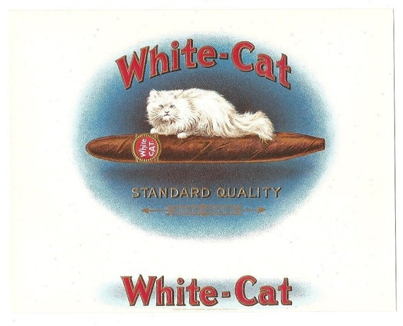 10 Old Inner CIGAR Box LABELS WHITE Cat Etc...Due To The