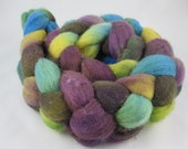 Polwarth Roving for Spinning or Felting-Approximately 4 Ounces
