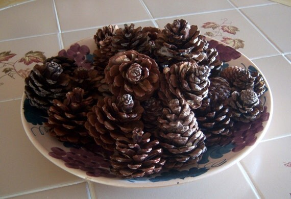 Scented Pine Cones for Decortating and Crafting - 20 cones