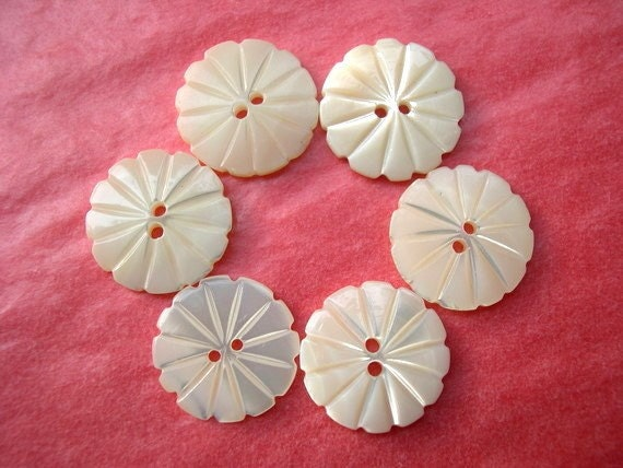 6 Buttons,Shell
