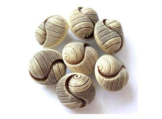 Vintage buttons plastic shell design shank buttons, 7 buttons