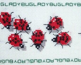 Ladybug, Ladybug--LB97068