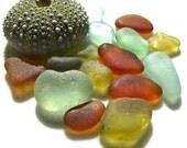 Autumn Sunshine beach sea glass supplies. rare citron. golden amber. seafoam