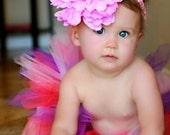 Toddler Tutu in Purple Bi...