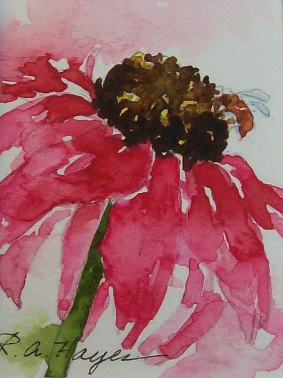 Pink Coneflower Wildflower Miniature Watercolor By