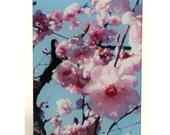 Cherry Blossom heat proof  glass cutting board, Cherry Blossoms glass, cherry blossoms trivet,Cherry blossom art, Japanese Cherry art