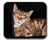 Tabby Cat Nap in Box Art Mouse Pad