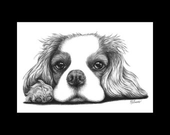 Cavalier King Charles Spaniel on Paw Dog 8 x 12 Signed Giclee Fine Art Print