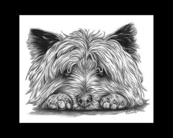 Cairn Terrier on Paws Dog 8 X 10 Signed Giclee Fine Art Print