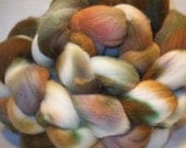 February in Michigan bfl wool roving\/top 3.75 oz