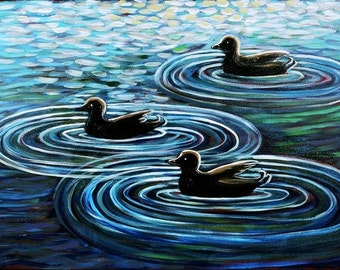 Three Ducks Swimming - Print