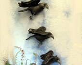 Pdf Pattern, Primitive Crows, Wall Hanging, Soft Sculpture, Crow Doll, Crow