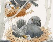 The Rookery  Fine Art print 11 x 7 1/2 inches