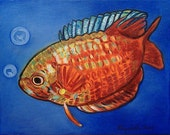 RESERVED FOR LAME - Red Fish -- 11 x 14 inch original oil painting (not a print) -- a colorful, bold perfect gift