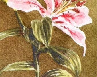 Original ACEO Watercolor Painting - Tiger Lily