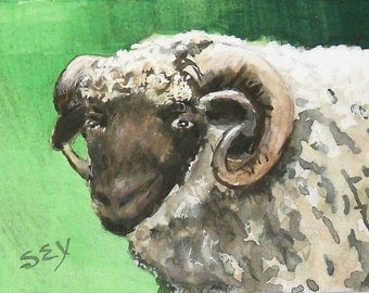"ACEO Original Watercolor Paintings - Sheep - Ram - Animal Art - 2 1/2"" x 3 1/2"" - Artist Trading Cards - Art Cards - Fine Art"