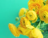 Floral wall art - turquoise aqua teal - nursery art - lemon yellow - baby room decor - cheerful bright photography print  'Happy Together'