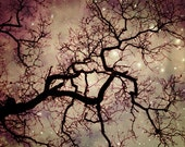 "Tree photograph starry night sky plum mauve wall decor celestial stars woodland oak tree wall art  ""A Kind of Magic"""