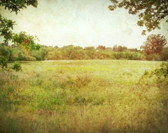 "Landscape photography olive green amber gold trees vintage antique style nature woodland wall art ""Summer Meadow"""