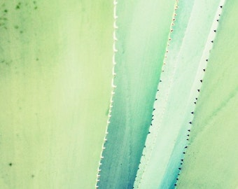 Botanical photography print aqua mint green agave leaves tropical wall art - Blue Agave