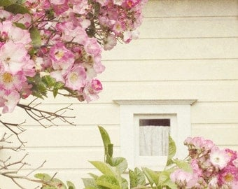 Botanical photography print old fashioned roses cream pink house window bedroom wall art - Nostalgia