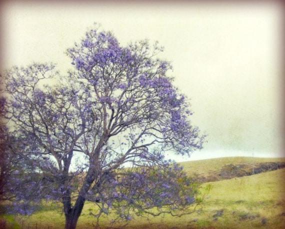 Fine Art Print Dreamy Tree Landscape Photograph Purple