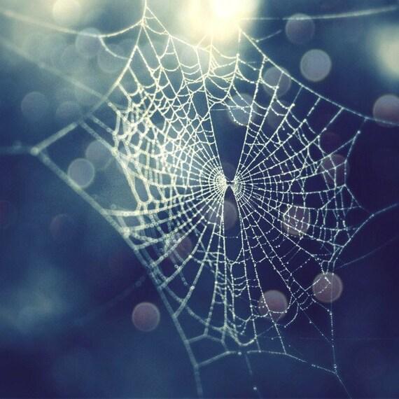 "Cob Web Art - Nature Photography - Blue Wall Art - Sparkly Spider Web - Ethereal Dew Drops - Bokeh Indigo - Blue Art Print ""Crystalline"""