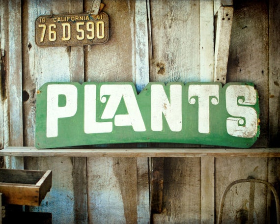 "Rustic farmhouse decor | wooden garden sign | vintage California licence plate | country life | barn print | green garden plant ""Plants"""