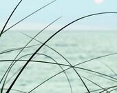 Ocean Photograph, sunrise dawn seagrass sea oats summer pink sun teal mint green - 5x5 - Simplicity