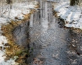 Winter Photography, Nature Art Print, White Snow, Creek Reflection, Woodland Trees, Icy Stream, Forest, Cold Water, 16x24, 20x30, 24x36