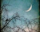 bird man in moon tree stars twilight crescent winter teal blue 5x5 - Hello Moon