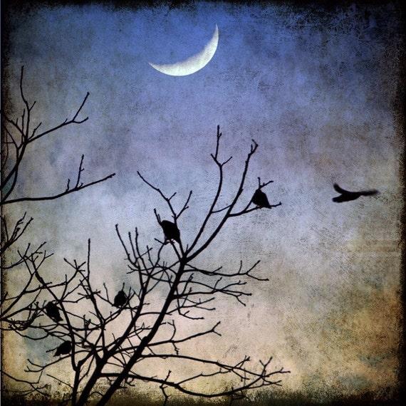 Crescent Moon Photography, Birds in Flight Print, Crows, Black Birds, Evening Sky Art, Winter, Trees, Dusk, Twilight - Flying into the Night