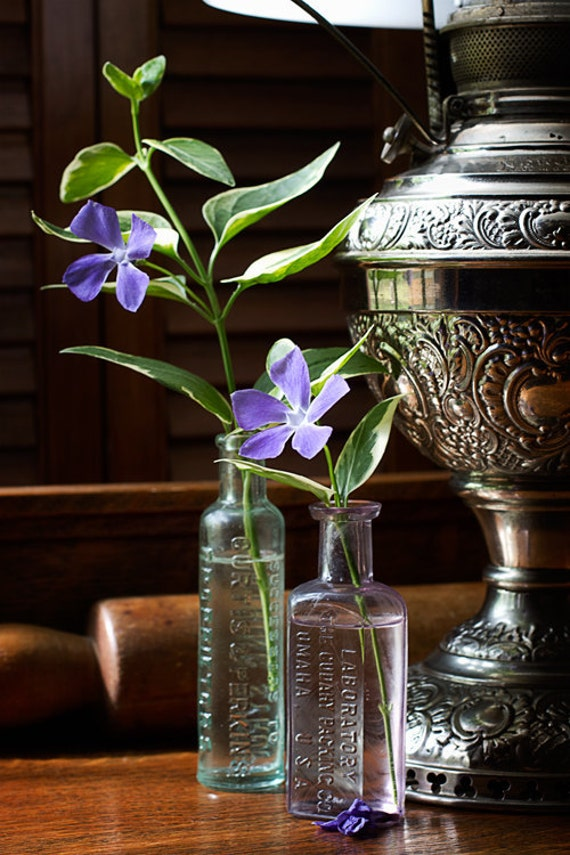 Flower Photograph, Botanical Art, Periwinkle Print, Floral Still Life, Silver Lamp, Glass Bottles, Home Decor, Lavender Petals - Periwinkles