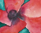 Red Poppy Orginal Watercolor Painting Watercolour Art 14x16 matted
