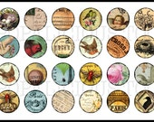 24 Cottage Nesting Collection flat back buttons, pin back buttons or hollow your choice