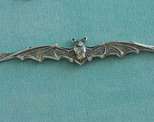 Silver Bat Finding 2714
