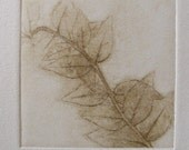 Leaves - Original Etching - LIMITED EDITION Last of 10 RESERVED
